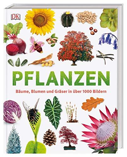 Pflanzen: Bäume, Blumen und Gräser in über 1000 Bildern