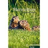 Murmeltiere: Deutsch als Fremdsprache