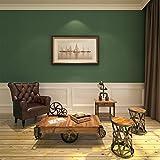 HANMERO Rotolo di carta da parati in stile vintage, verde, in tessuto non tessuto, ideale come sfondo per TV, decorazione per la casa---10m*0.53m