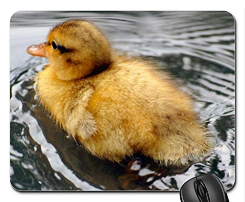downy-duckling-on-water-mouse-pad-mousepad-ducks-mouse-pad