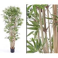 Suchergebnis Auf Amazon De Fur Kunstlicher Bambus Klein Kuche