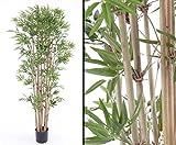 Künstliche Bambuspflanze UV geschützt und schwer entflammbar, 150cm - Kunstpflanze künstliche Blumen Kunstblumen Blumensträuße künstlich, Seidenblumen oder Blumen aus Plastik Kunststoff