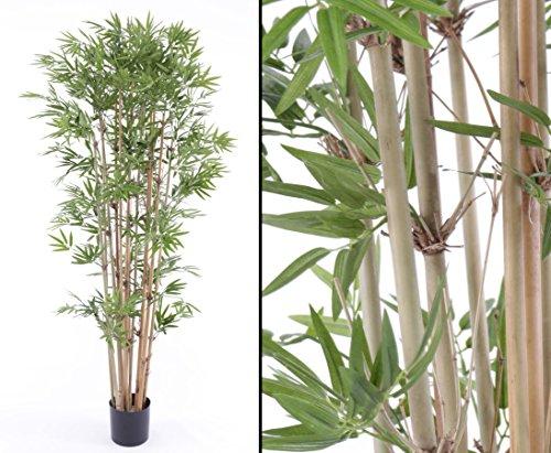 kunstpflanzen-discount.com Bambusbaum künstlich, mit ca. 1440 textilen Blättern, Naturstämme, Höhe 150cm