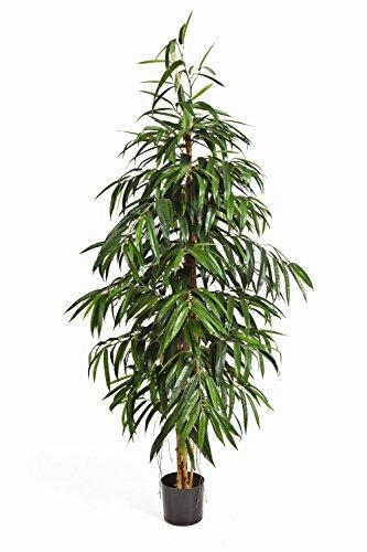 Set 2 x Spitze Deko-Longifolia HARU, 971 Blätter, grün, schwer entflammbar, 210 cm – Bäume künstlich / Kunst Longifolia – artplants