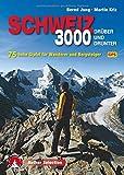 Dreitausender Schweiz - drüber und drunter: 75 hohe Gipfel für Wanderer und Bergsteiger. Mit GPS-Daten (Rother Selection)