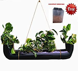 RARE PRODUCTS Strong PVC Made Multi Pot Planter Hanging for Plants Color : Black