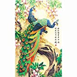 Generic DIY 5D Diamond Painting Spirit of Peacok Embroidery Cross Stitch Home Decor