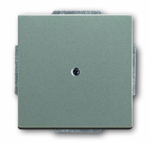 Preisvergleich Produktbild Busch-Jaeger 1742-803 Blindzentralscheibe