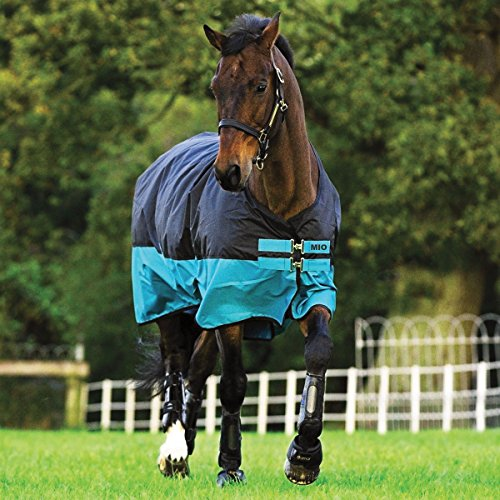 Horseware Amigo Mio Turnout medium black turquoise Weidedecke Winterdecke (125)