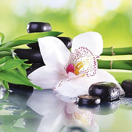 ndbild Deco Glass Africa Studio Spa Steine, Bambus Zweige und weiße Orchidee auf dem Tisch auf natürlichem Hintergrund Wellness Zen Pflanze Fotografie Grün C0ZE (Spa Steine)