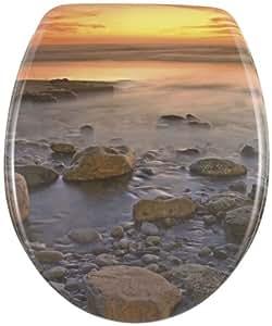 Wenko 17612100 WC-Sitz Stone Shore  - rostfreie Edelstahlbefestigung, Kunststoff - Duroplast, 37.5 x 44.5 cm, Mehrfarbig