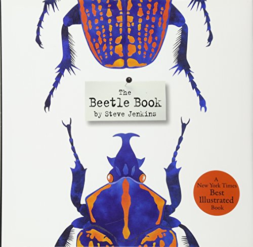 beetle-book-the