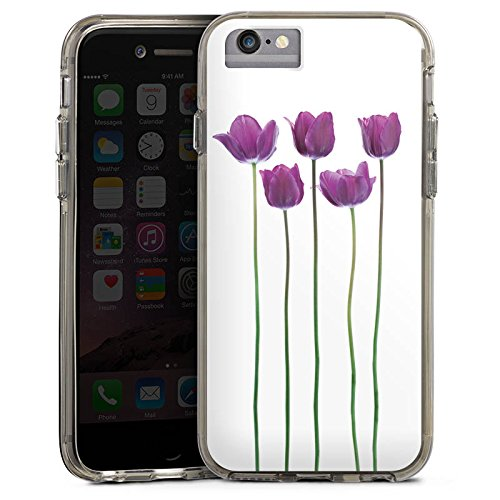 Apple iPhone 6 Plus Bumper Hülle Bumper Case Glitzer Hülle Tulpen Lila Blumen Bumper Case transparent grau