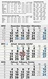 Baier & Schneider Monats-Wandkalender Dreimonatskalender UWS, 3 Blöcke, 300 x 490 mm, grau