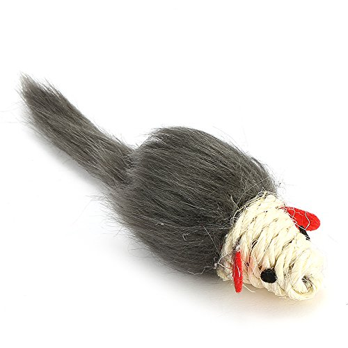 Tutoy Critters Katze Spielzeug Katzenminze Mäuse Haustier Spielzeug Crazy Kitty Spielzeug Pet (Kostüm Kitty Bat)