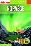 Guide Norvège 2017 Carnet Petit Futé