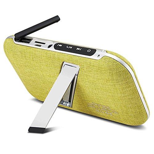Tragbare Wireless Bluetooth Lautsprecher Mit 4000mAh Power Bank, integriertes Mikrofon, Dual Treiber, USB & Micro USB-Ports, Micro SD Karte Slot, Aufladen Ihres Telefon, beantworten Anrufe, Musik, für iPhone, iPad, und Laptops und mehr (Bm Bank)