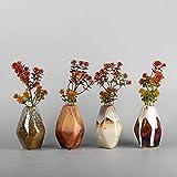 AMCER Keramische Dekorative Vasen, unregelmäßige Form Kleine Kaliber Vase Dekoration Vase Ideale Geschenk für Hochzeit Hydroponische Set of 4