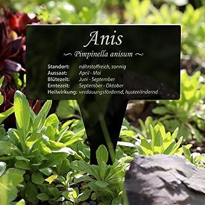 Acrylglas Kräuter Pflanztafel Eckig schwarz - Gartenstecker, Kräuterschilder, Pflanzenstecker - Auswahl von Bütic GmbH auf Du und dein Garten