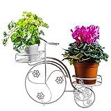 Jren-zk Kreativer Schmiedeeisen-Blumen-Stand, Dreirad-Doppelschicht-Anlagen-Stand-Weiß-Desktop-Schlafzimmer-Wohnzimmer-Restaurant-Dekoration-Topfpflanzen (Farbe : Weiß)