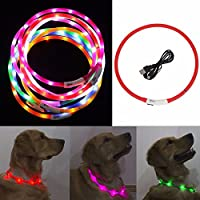 IEFIEL Collar Recargable Ajustable de Luz LED de Seguridad para Perro Gato Mascota con Cable USB
