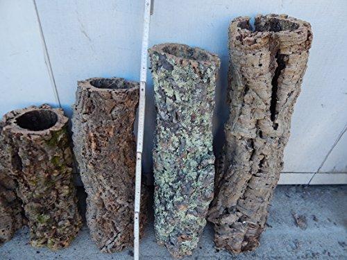 Korkröhre ca. 60 - 80 cm ,Korkrinde, Korkeiche, Terrarium -