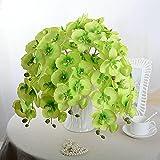 EMVANV Beautiful Flower Dekorationen DIY Wohnzimmer Künstliche Schmetterling Orchidee Seide Blume, grün, Free Size