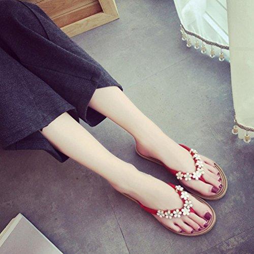DM&Y 2017 Sandali della Boemia piccoli fiori infradito sandali piatti grandi cantieri Red