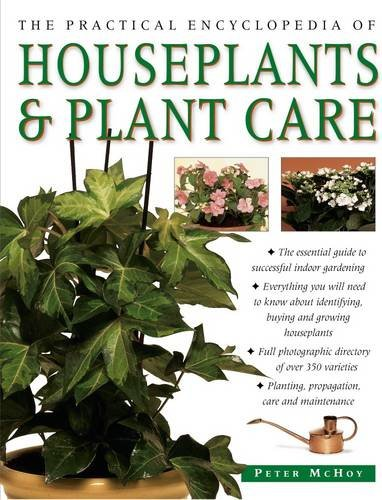 ann-prac-ency-houseplants-plant-care