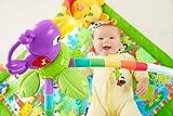 dschungel baby - Vergleich von