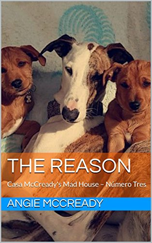 The Reason: Casa McCready's Mad House – Número Tres (English Edition) (Womens Mad Dog)