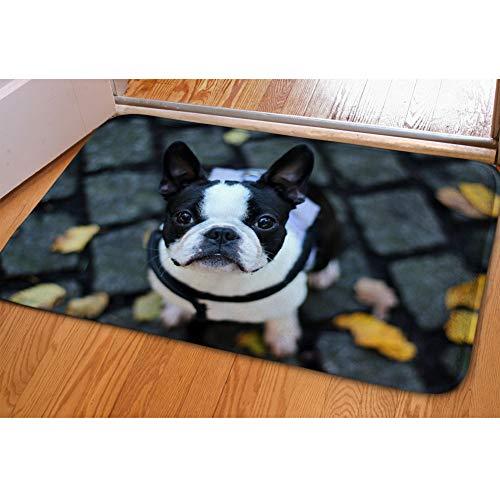 Nopersonality waschbar Fußmatten saugfähig Fun Dog Print Eingang die Sauberlaufmatten, Flanell, Boston Terrier, M (Boston Terrier Kissen)
