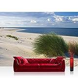 Fototapete 368x254 cm PREMIUM Wand Foto Tapete Wand Bild Papiertapete - Strand Tapete Meer Dünen Gras Wolken Ostsee beige - no. 1933