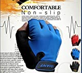 #6: SHOPEE 1PAIR Half Finger Cycling Glove Bicycle Mountain Bike Gloves XXL (Assorted Color)
