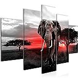 Bilder Afrika Elefant Wandbild 150 x 100 cm Vlies - Leinwand Bild XXL Format Wandbilder Wohnzimmer Wohnung Deko Kunstdrucke Rot Grau 5 Teilig -100% MADE IN GERMANY - Fertig zum Aufhängen 001253b