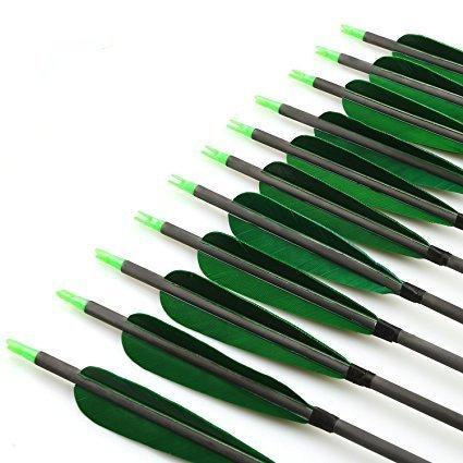 VERY100 Pfeile für Bogenschießen Pfeile Carbonpfeile 32 Zoll 500 SP naturfeder für Recurvebogen und Compoundbögen Bogensport 12 Stück mit Pfeile Köcher (Grün)