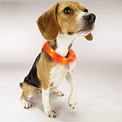 LED Dog Necklace Collar, Noza Tec USB Rechargeable LED Light-Up Safety Neck Loop Adjustable Flashing Collar