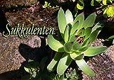 Sukkulenten (Posterbuch DIN A2 quer): Bilder von Sukkulenten die auch Dickblattpflanzen genannt werden.Die Aufnahmen stammen aus dem eigenen Garten. ... [Jan 19, 2013] LoRo-Artwork, k.A.