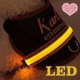XS-XL Wunsch Name LED LICHT Brustgeschirr Hundegeschirr Halsband Art Leder Anti Druck Kehlkopf Schutz Softgeschirr