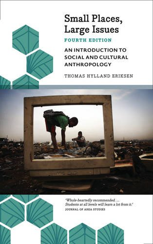 Small Places, Large Issues - Fourth Edition: An Introduction to Social and Cultural Anthropology par Thomas Hylland Eriksen