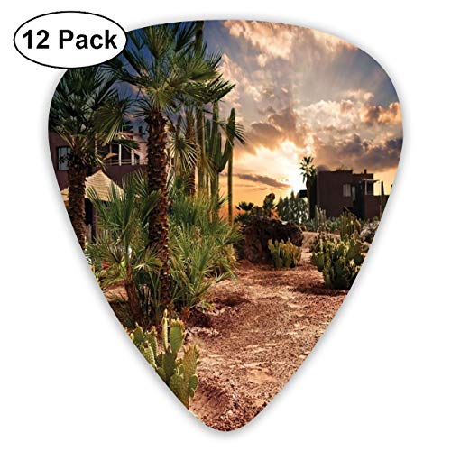 Oasis Palm-design (Guitar Picks - Abstract Art Colorful Designs,Majestic Sky View Palm Trees And Cactus In Oasis Morocco Tropic Nature,Unique Guitar Gift,For Bass Electric & Acoustic Guitars-12 Pack)
