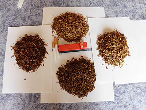 6 Sorten Tabaksamen 6x1000 Echter Rauchtabak Virginia, Orient Xanthi Burley.