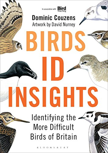 birds-id-insights
