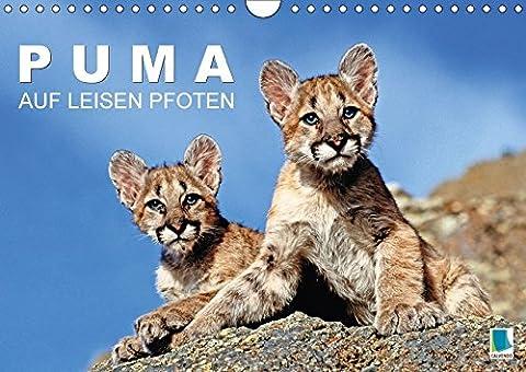 Puma: Auf leisen Pfoten (Wandkalender 2018 DIN A4 quer): Pumas: Geschmeidige Raubkatzen (Monatskalender, 14 Seiten ) (CALVENDO Tiere) [Kalender] [Apr 01, 2017] CALVENDO, k.A.