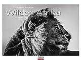 Wildes Afrika - Kalender 2019