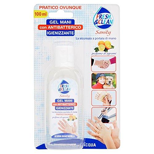 fresh-clean-sanity-gel-mani-con-antibatterico-igienizzante-100-ml