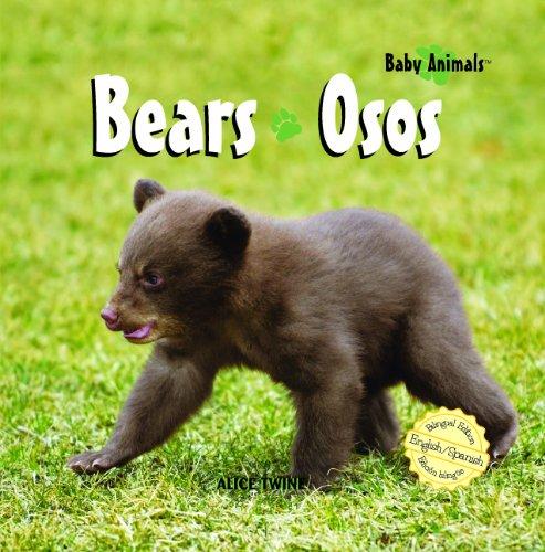 Bears/Osos (Baby Animals)