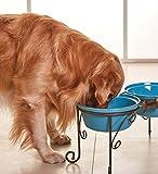 SparkWorks Hundebar, Futterbar, Futterstation, Doppelnapfständer (2x2400ml, Scuba Blau) - Die beliebtesten angehoben Hundenäpfe -
