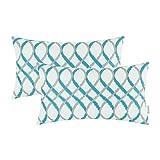 Best Pillowcase Modern Fantasy Sofas - CaliTime Pack of 2 Cozy Bolster Pillow Cases Review