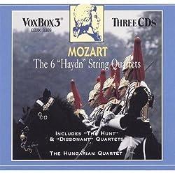 Die 6 Haydn Streichquartette